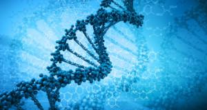 Неандертальское ДНК может влиять на депрессии и пристрастие к табаку